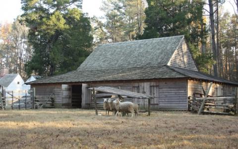 Tudor Hall Plantation - barn